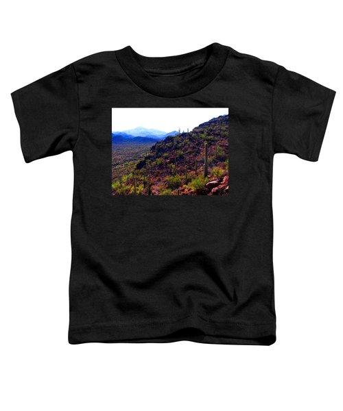 Saguaro National Park Winter 2010 Toddler T-Shirt