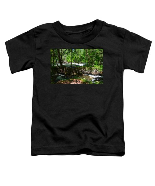 Saluda River Columbia Sc Toddler T-Shirt
