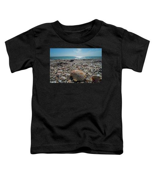 Sanibel Island Sea Shell Fort Myers Florida Toddler T-Shirt