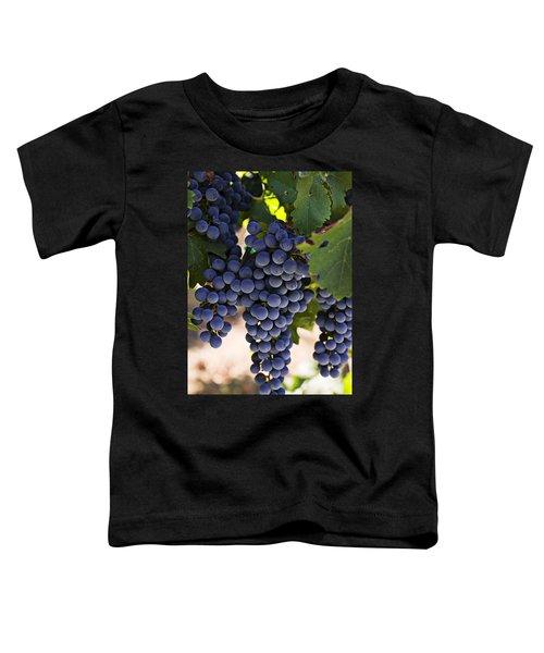 Sauvignon Grapes Toddler T-Shirt