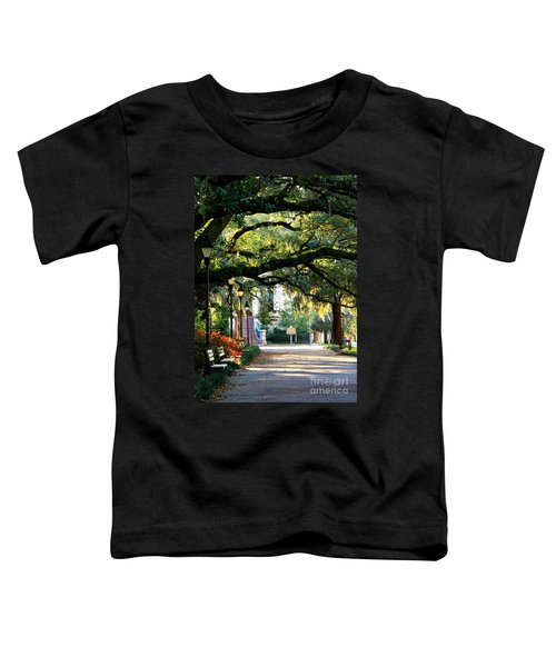 Savannah Park Sidewalk Toddler T-Shirt