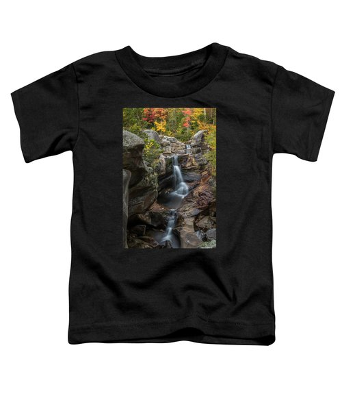 Screw Auger Falls In Autumn Toddler T-Shirt