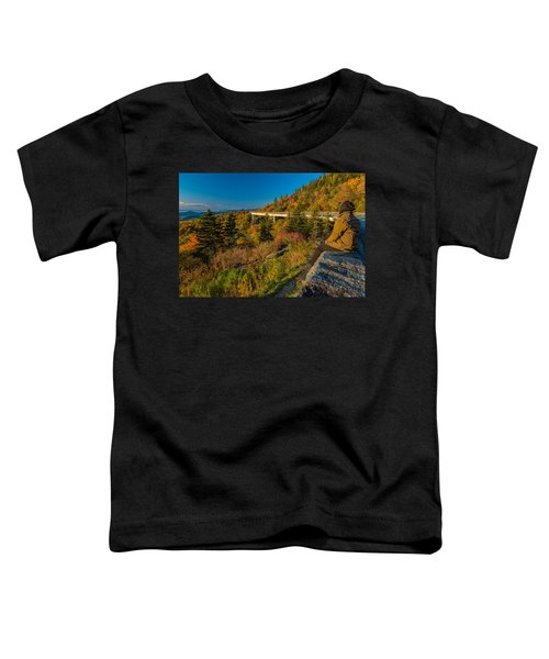 Seize The Day At Linn Cove Viaduct Autumn Toddler T-Shirt