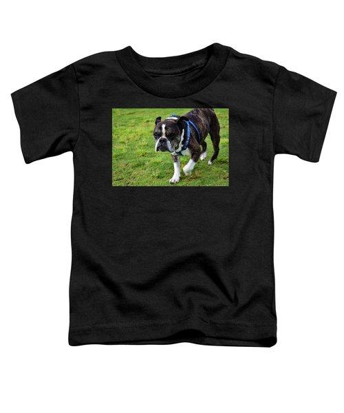 Leroy The Senior Bulldog Toddler T-Shirt