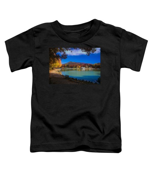 Seven Sisters From Lake Tomahawk Toddler T-Shirt