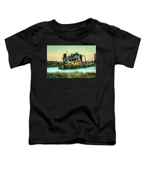 Shipwreck - Mary D. Hume Toddler T-Shirt