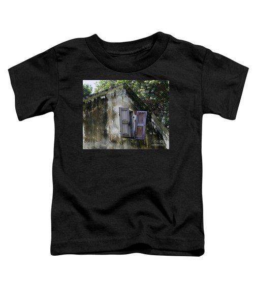 Shuttered #3 Toddler T-Shirt