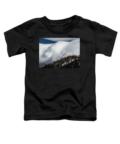Sierra Stormclouds Toddler T-Shirt