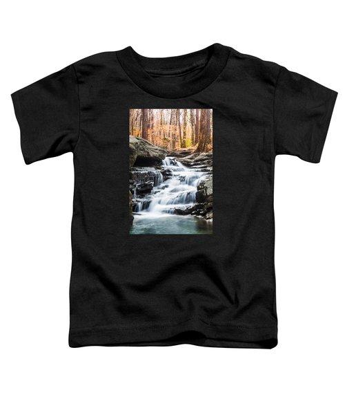 Autumn At Moss Rock Preserve Toddler T-Shirt