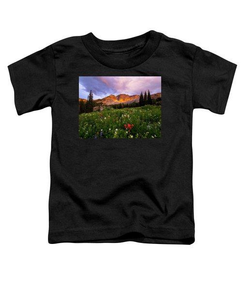 Silent Stirrings Toddler T-Shirt