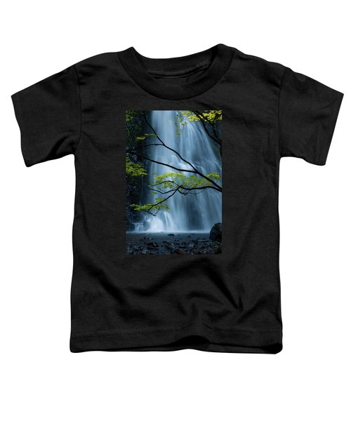 Silver Fall Toddler T-Shirt