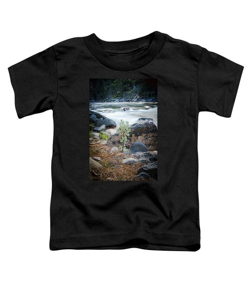 Silver Fork Manzanita Toddler T-Shirt