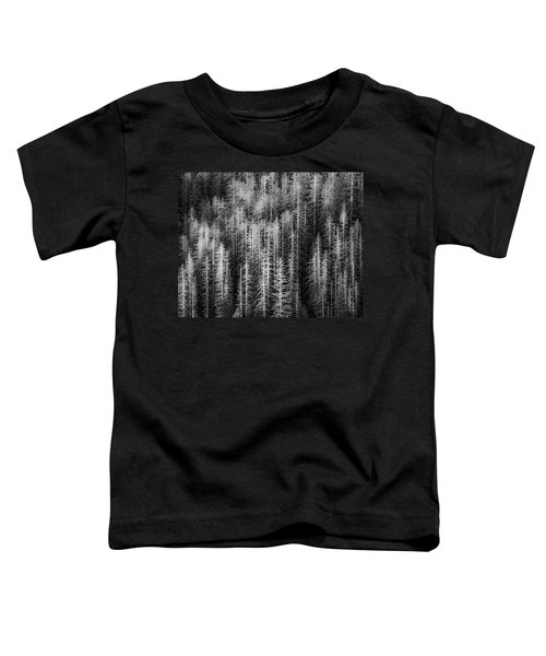 Sitka Abstraction Toddler T-Shirt