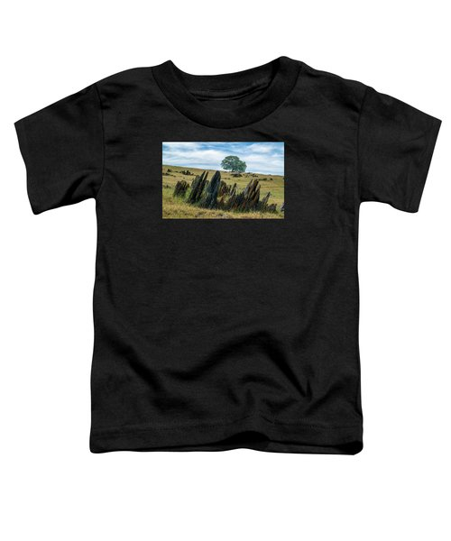 Slate Filled Meadow Toddler T-Shirt