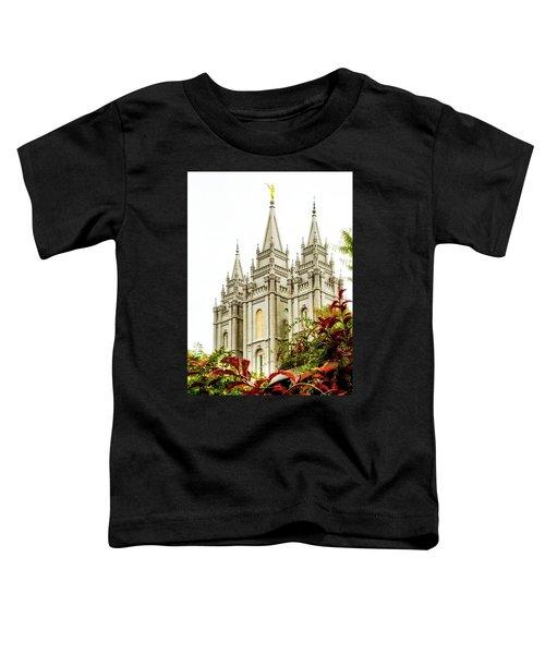Slc Temple Angle Toddler T-Shirt