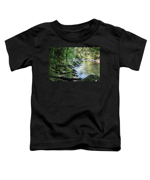 Slippery Rock Gorge - 1934 Toddler T-Shirt
