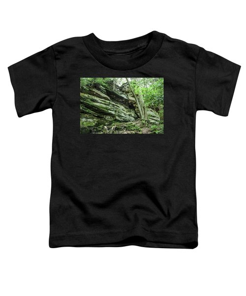 Slippery Rock Gorge - 1958 Toddler T-Shirt