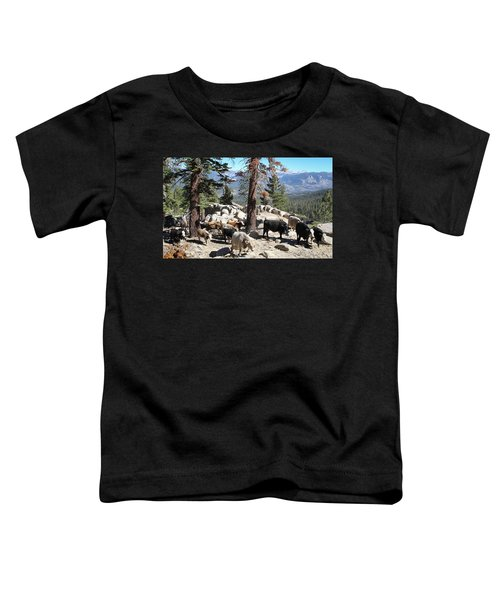 Slow Is Fast Toddler T-Shirt