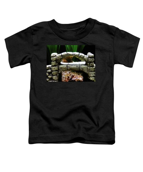 Snail Over A Bridge Toddler T-Shirt