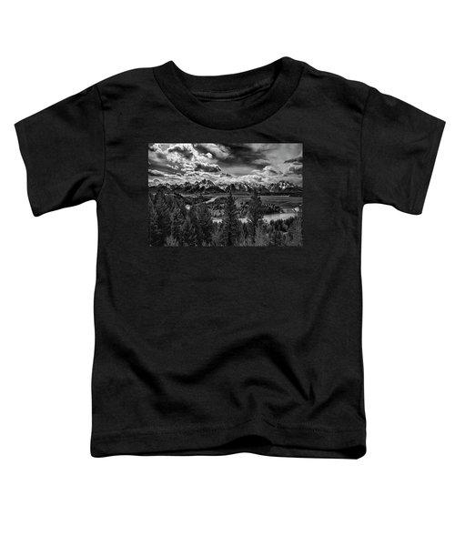 Snake River And Tetons Toddler T-Shirt