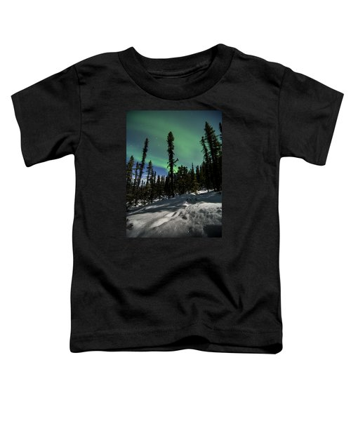 Snow Trails  Toddler T-Shirt