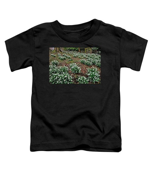 Snowdrops In Spring Woodland Toddler T-Shirt