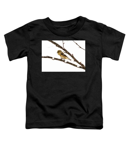 Snowy Day Goldfinch Toddler T-Shirt