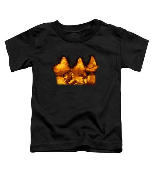 Snowy Ice Bottles Toddler T-Shirt