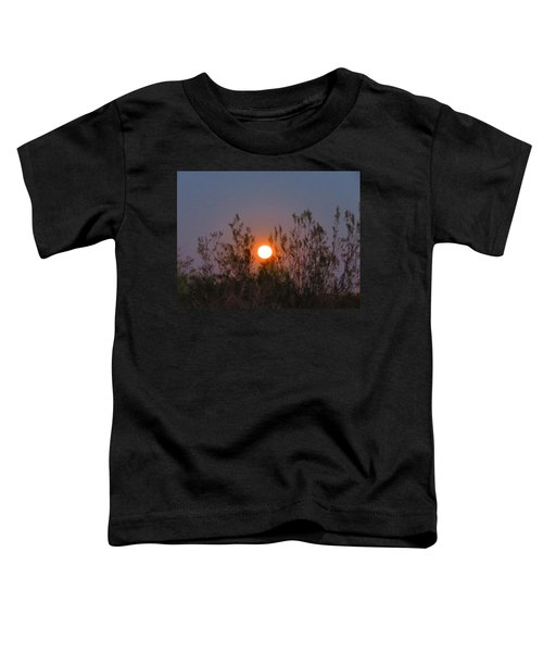Sonoran Desert Harvest Moon Toddler T-Shirt