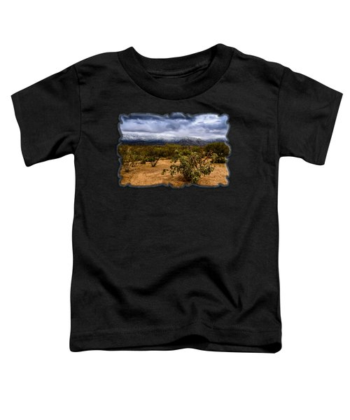 Sonoran Winter H44 Toddler T-Shirt