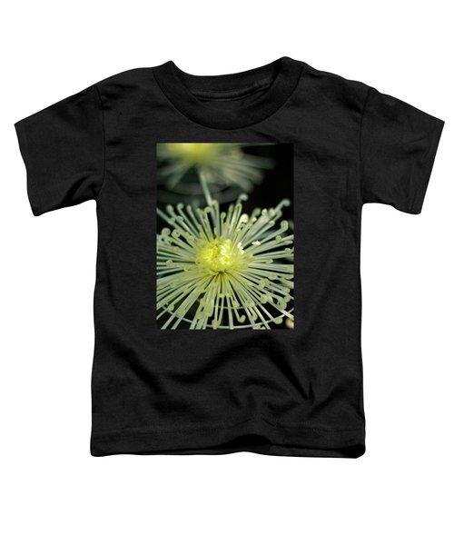 Spiral Chryanth Toddler T-Shirt
