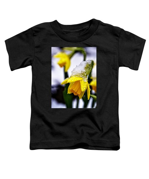 Spring Daffodil Flowers In Snow Toddler T-Shirt