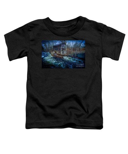 Spring Runoff Toddler T-Shirt