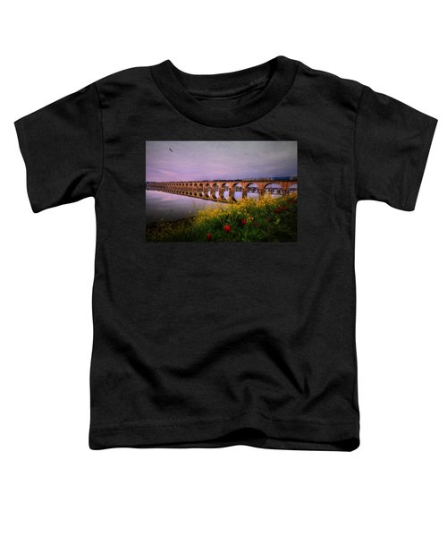 Springtime Reflections From Shipoke Toddler T-Shirt
