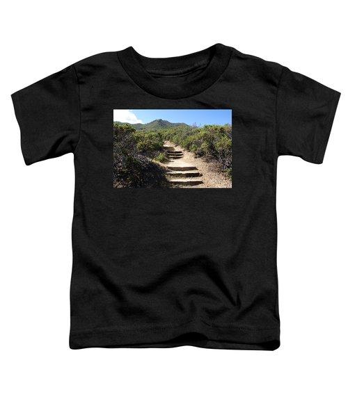 Stairway To Heaven On Mt Tamalpais Toddler T-Shirt