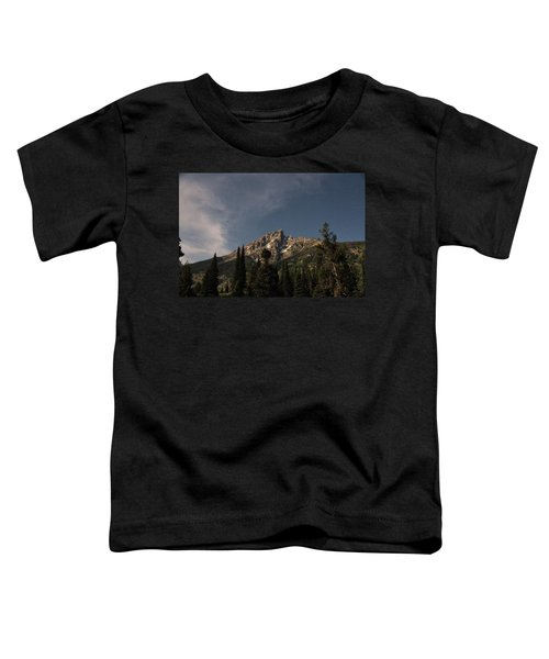 Stars Over Grand Teton Toddler T-Shirt