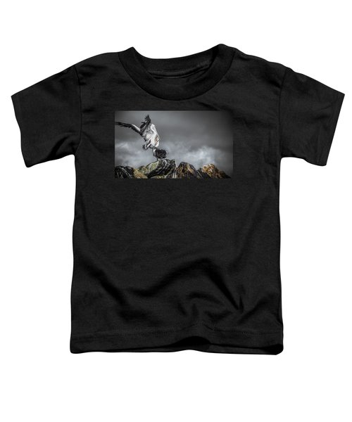 Storm Birds Toddler T-Shirt