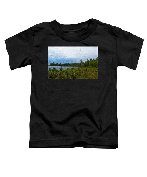 Storm On Raquette Lake Toddler T-Shirt