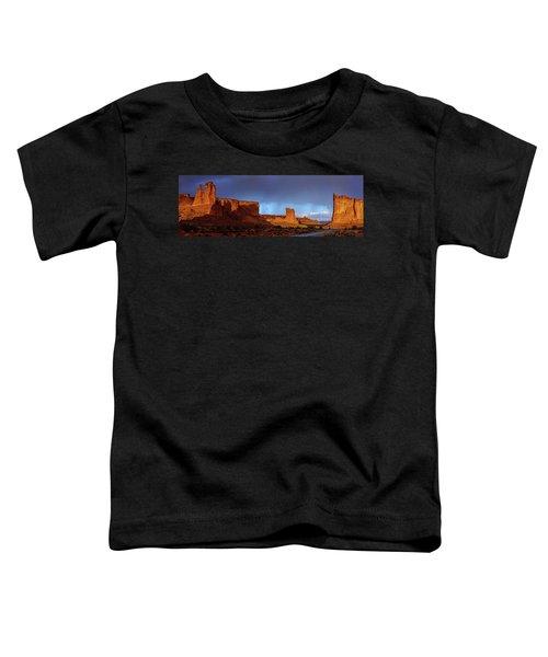 Stormy Desert Toddler T-Shirt
