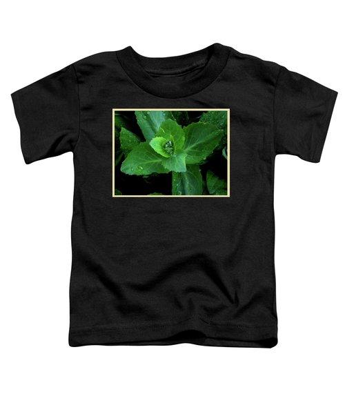 Succulent After The Rain  Toddler T-Shirt