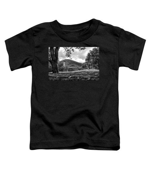 Sugar Plantation Ruins Bw Toddler T-Shirt