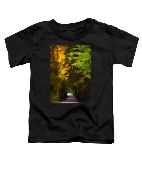 Summer And Fall Collide Toddler T-Shirt
