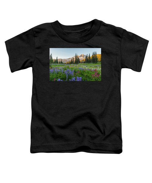 Summer Beauty At Indian Henry's Hunting Ground Toddler T-Shirt