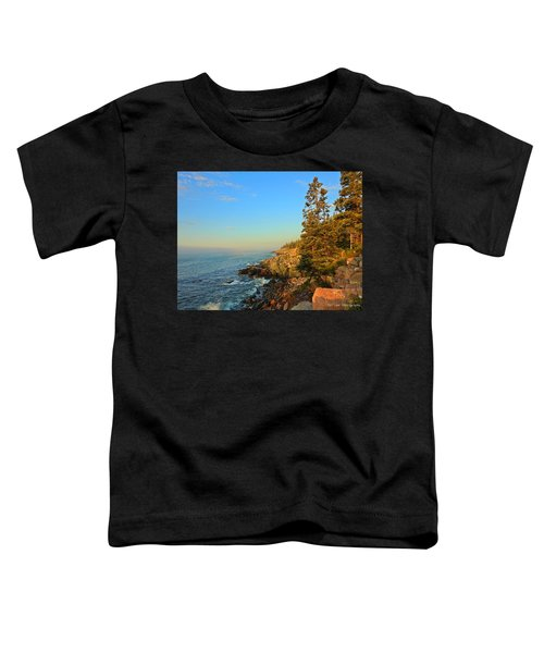 Sun-kissed Coast Toddler T-Shirt