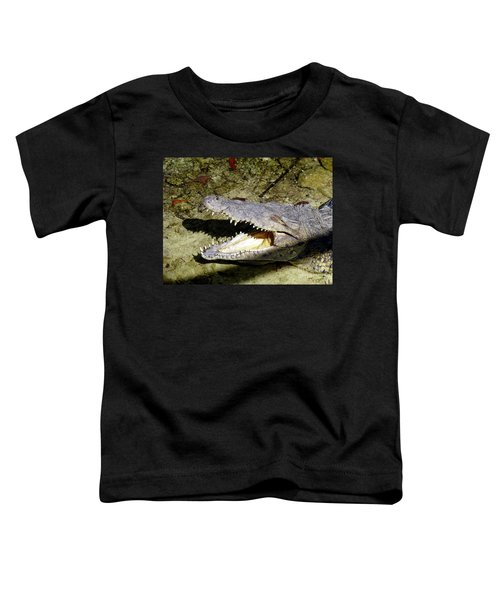 Toddler T-Shirt featuring the photograph Sunbathing Croc by Francesca Mackenney