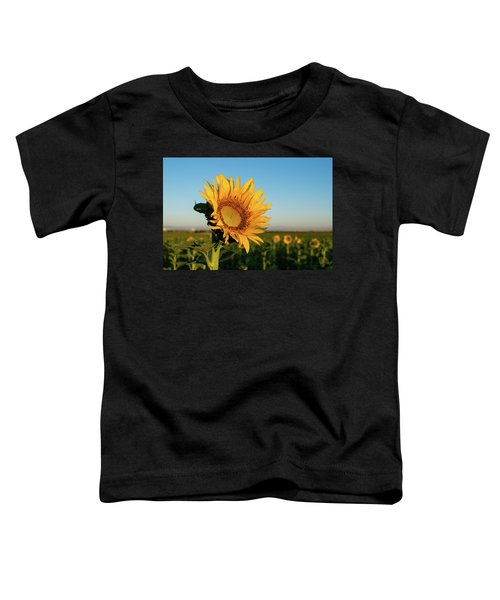Sunflowers At Sunrise 2 Toddler T-Shirt