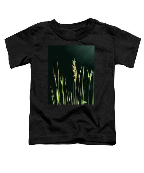 Sunlit Grasses Toddler T-Shirt