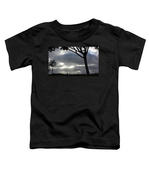 Sunlit Gray Clouds At Otay Ranch Toddler T-Shirt