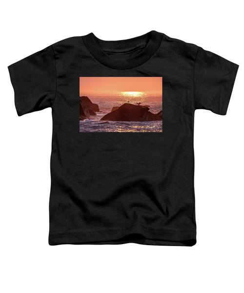 Sunrise, South Shore Toddler T-Shirt