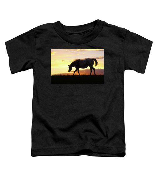 Sunset Appy Toddler T-Shirt